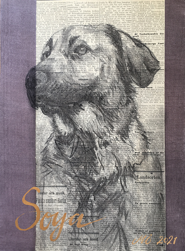 teckning av hund